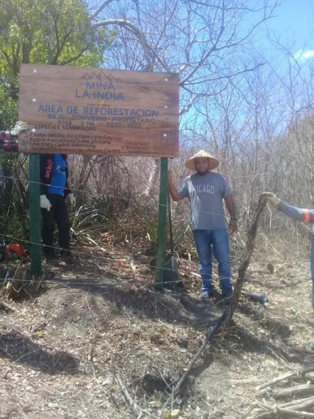 Reforestation area Real de la Cruz concession